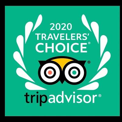 2020-travelers